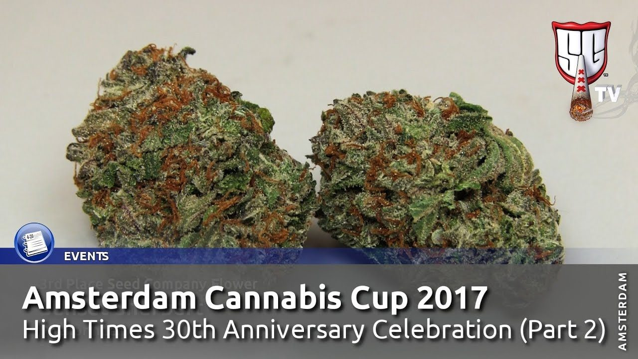 Amsterdam Cannabis Cup 2017 High Times 30th Anniversary Celebration (2/2) Smokers Guide TV Amsterdam