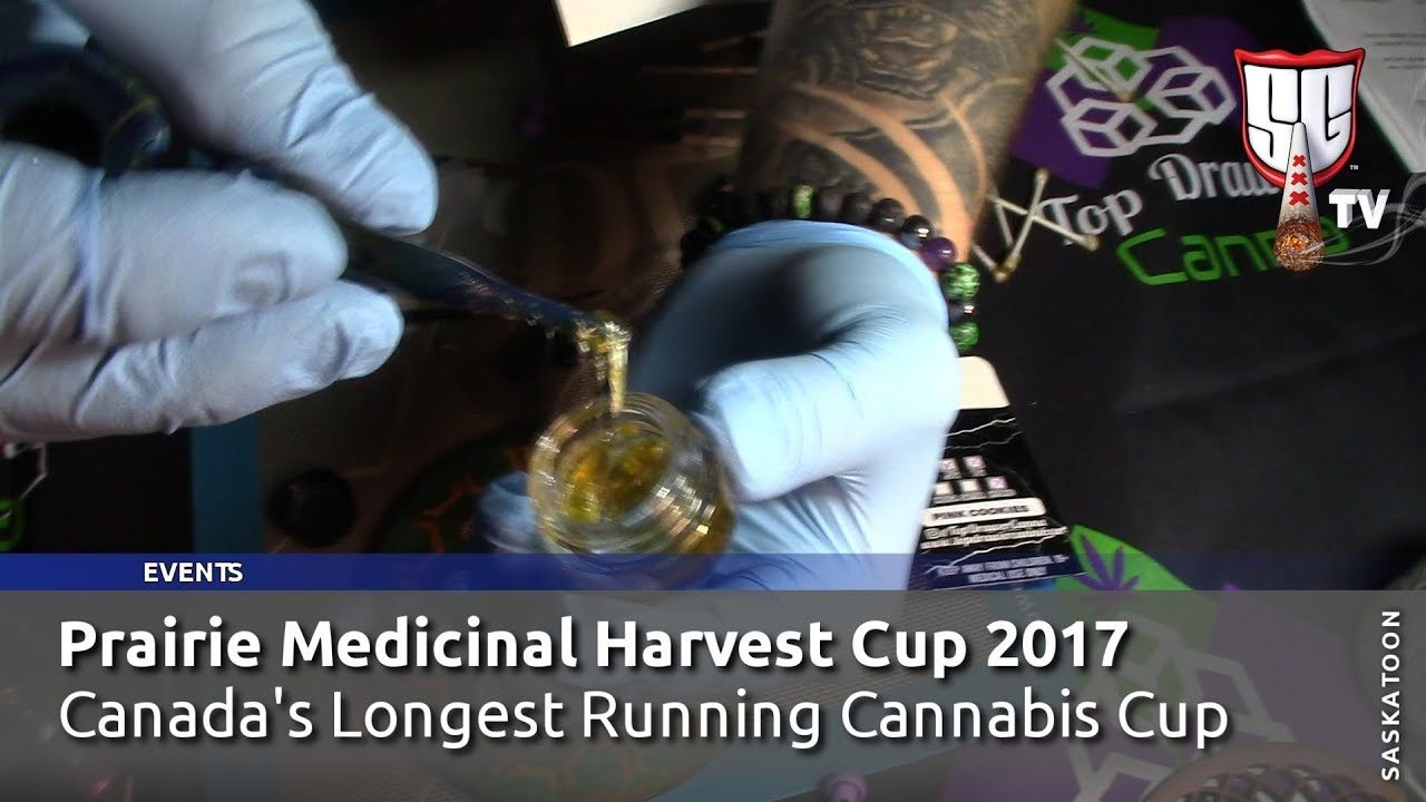Canada's Longest Running Cannabis Cup – Prairie Medicinal Harvest Cup 2017 – Smokers Guide TV Canada